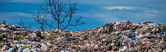 product destruction landfill